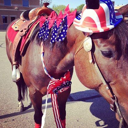 Parade Pony